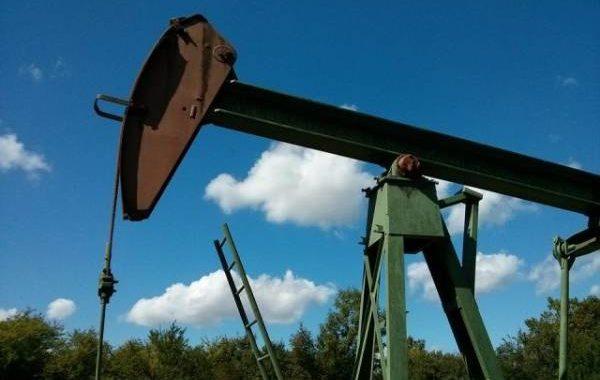 Цены на нефть Brent выросли, а на WTI- упали